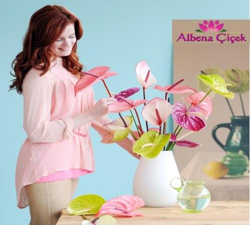 Albena Çiçek