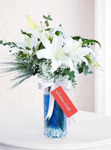 Mavi rüya lilyum arajmaný