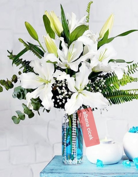 Beyaz güzellik lilyum arajmaný