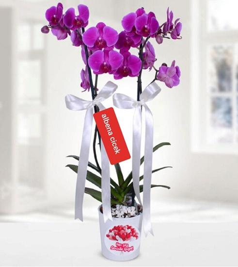 Herþey seninle güzel temalý 2 dal mor orkide cicegi