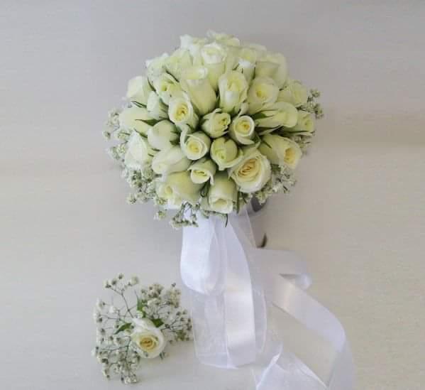 beyaz gül gelin çiçegi