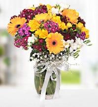 silindir camda renkli mevsim çiçegi arajmaný