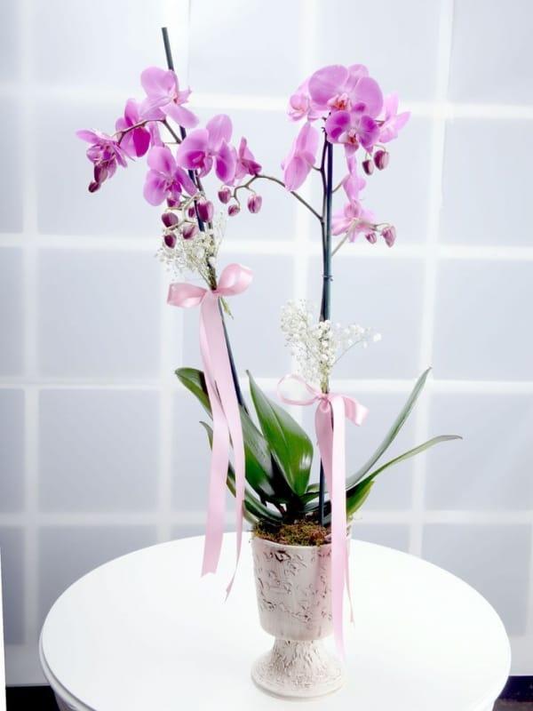 Dekoratif ayakli seramikte 2li mor orkide çiçegi