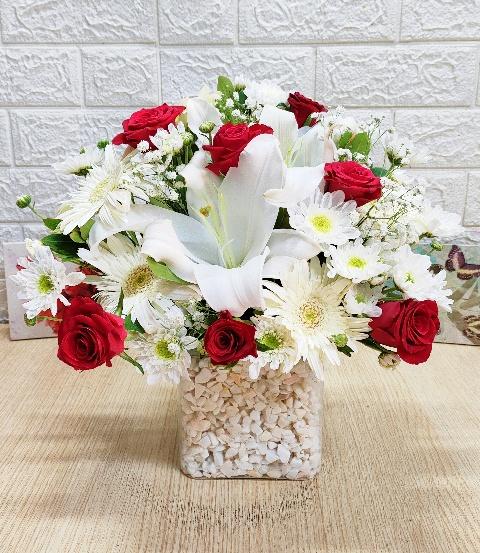 kýrmýzý beyaz esinti lilyum gül arajmaný çiçegi