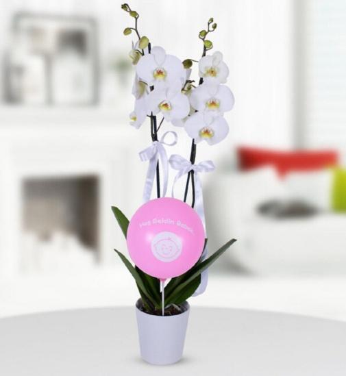 Pembe balonlu kýz dogum beyaz orkide çiçegi
